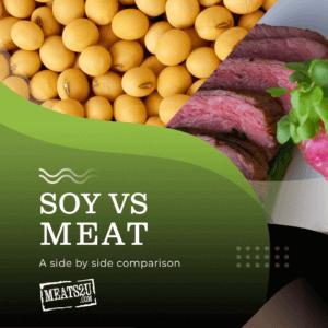 soy vs meat blog image